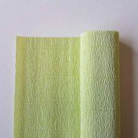 florist crêpepapier 180 grams 566 water green