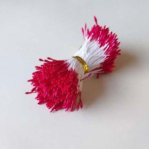 meeldraad meeldraden rood cerise