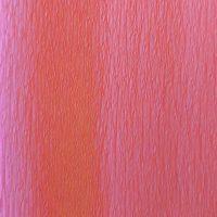 fijn crêpepapier 202 peach blossom pink