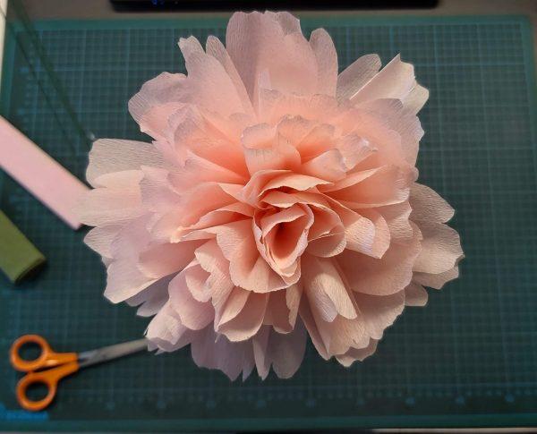 papieren bloemen zelf maken pioenroos van crêpepapier