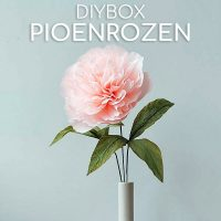 DIYboxen