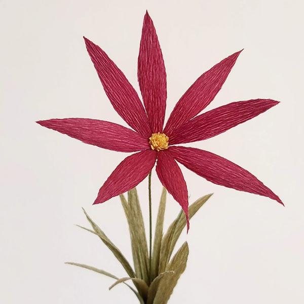 papieren-bloemen-crêpepapier-90-grams