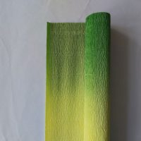180-grams-florist-crêpepapier-nuanced-600-5